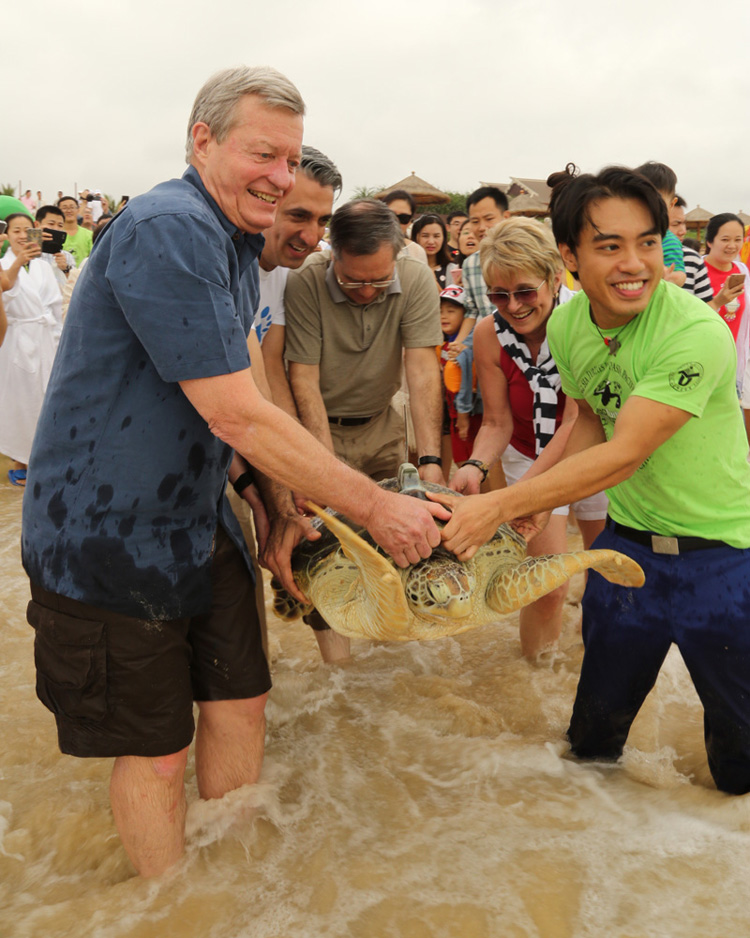 U.S. Ambassador and Senator Max Baucus releases endangered animal with Sea Turtles 911