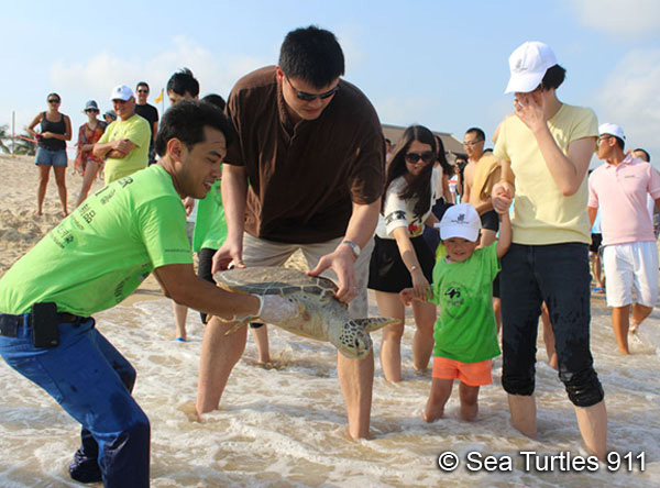 Yao Ming's daughter bids farewell to a sea turtle, as Yao Ming and Frederick Yeh release the turtle back to its ocean home.